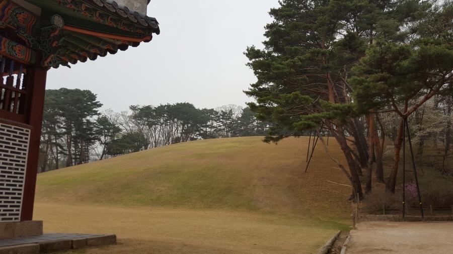 160410_인릉_019.jpg