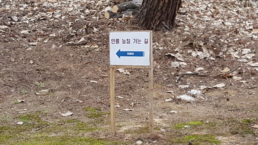 160410_인릉_024.jpg