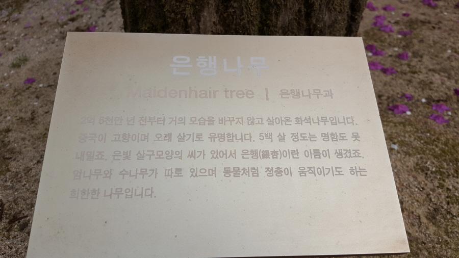 160410_인릉_037.jpg