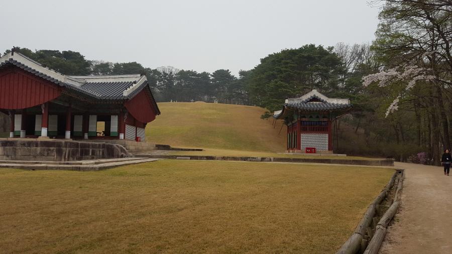 160410_인릉_013.jpg