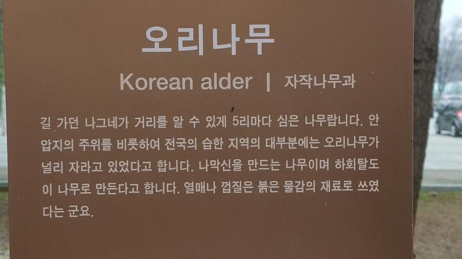 160410_인릉_040.jpg