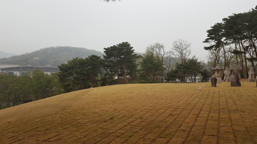 160410_인릉_029.jpg
