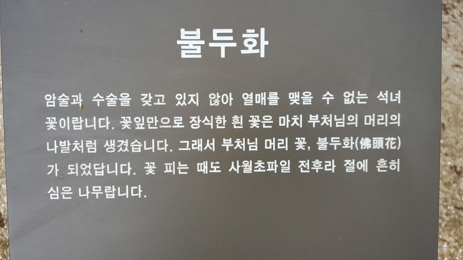 160410_인릉_038.jpg